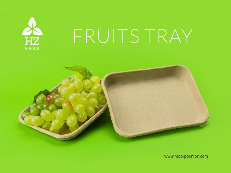 HZ Eco-friendly Paper Pulp Molded Fruit & Vegetable Tray