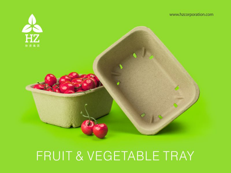 fruits tray, fruit, fruits, fruit farm, farm, farmer, food tray supplier, paper pulp tray, protector, fruit container, fruit packaging, export, manufacturer, Recyclable, Recycle, fruit trader, paper packaging