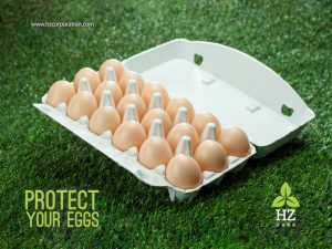 Eco-Friendly Paper Pulp Molding Egg Carton