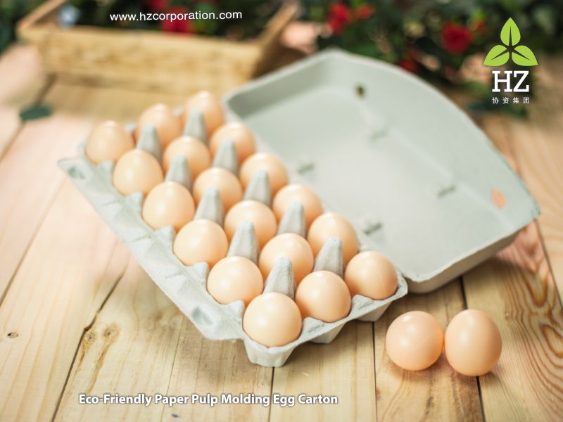egg tray, eggs carton, Biodegradable, Recyclable, Recycle, Go Green, GoGreen, Eco-friendly, zerowaste, Packaging, Cup carrier tray, egg tray, Egg Farm, egg trader, export, manufacturer, Poultry Farm, chicken, duck,