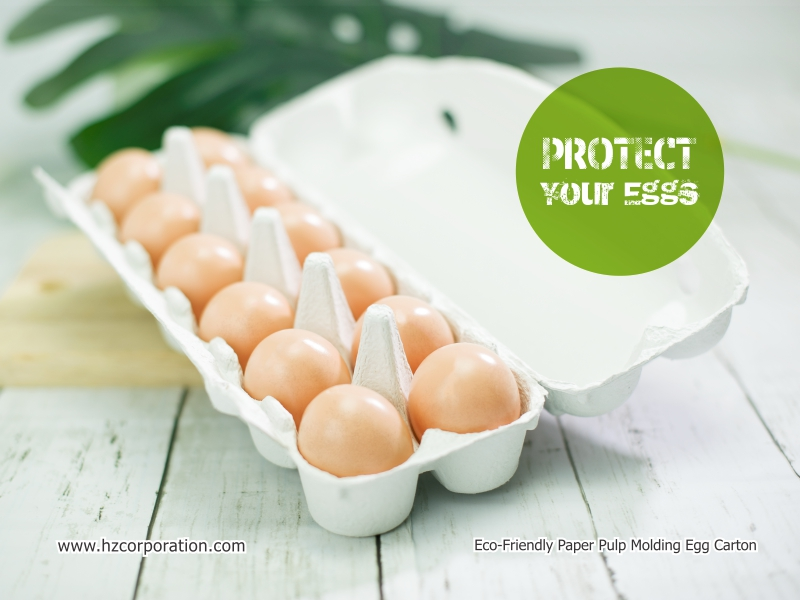 we manufacture a wide range of eco-friendly biodegradable paper pulp egg carton