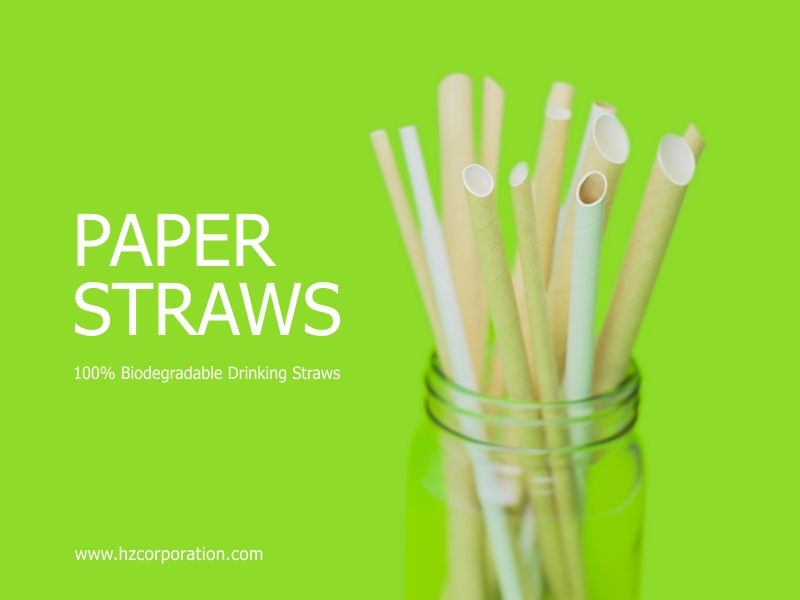 HZ Eco friendly recycled paper pulp products straw straws paperstraw coffee drink drinks beverage manufacturer cafe restaurant cafeteria barista