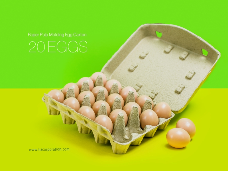 Quality Egg Carton